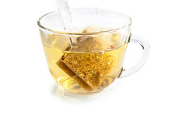 Green herbal tea bags Royalty Free Stock Photos