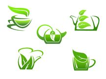Green herbal tea cups Royalty Free Stock Photography
