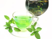 Green herbal tea with fresh mint Royalty Free Stock Images