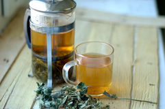 Green herbal tea Stock Photos
