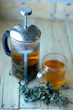 Green herbal tea Royalty Free Stock Photos