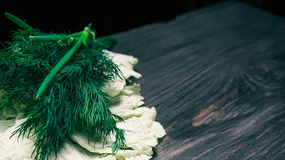 Green herbs on black wood Royalty Free Stock Photo