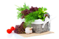 Green herbs in braided basket Royalty Free Stock Photo