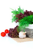 Green herbs in braided basket Stock Images