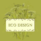 Green herbs floral background and eco label. Vector illustration Royalty Free Stock Photos