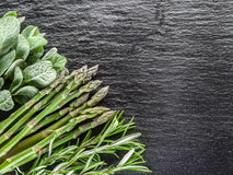 Green herbs. Royalty Free Stock Photo