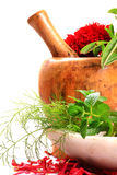 Green herbs and leaves. With wooden mortar against white background stock image
