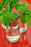 Green herbs Stock Photo