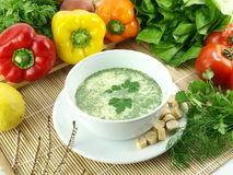 Green herbs soup Stock Photos