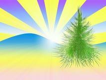Green herringbone. On solar winter background Stock Image