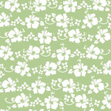Green hibiscus pattern. Traditional hawaiian pattern in green Royalty Free Stock Image