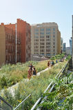 Green highline park in New York city Stock Images