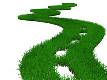 Green highway grass Stock Photography