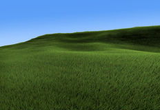 Green hill. 3d rendering of grass field and hill Stock Photography
