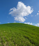 Green hill Royalty Free Stock Photos