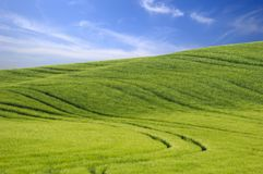 Green Hill And Blue Sky Royalty Free Stock Image