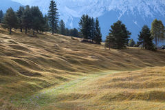 Green hill in Bavarian Alps Stock Image
