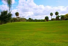 Green hill with blue sky. A beautiful rolling green hill of grass on florida golf course with trees and cloud filled sky. With plenty of copy space in the grass Stock Image