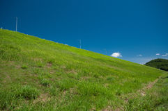 Green hill and blue sky. Beautiful green grass hill with blue sky Stock Image