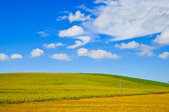 Green Hill, white clouds and Blue Sky. Green field Blue Sky Environment Infinity Concept Royalty Free Stock Image