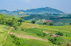 Green hill and blue sky, Thailand Royalty Free Stock Photos
