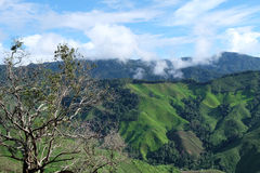 Green hill and blue sky view. Green hill and blue sky scene view in Nan province, Thailand Stock Photos