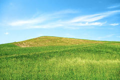 Green Hill Blue Sky Stock Photography