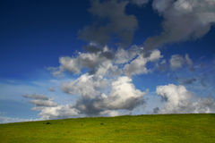 Green hill, blue sky and white clouds. A green hill under a deep blue sky and white clouds Stock Images
