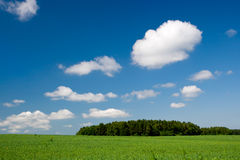 Green hill with clear blue sky Royalty Free Stock Photos
