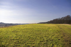 Green hill in early spring Royalty Free Stock Image