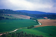 Green hill, farm and rural road Stock Image