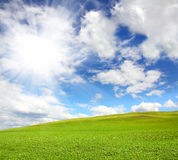 Green hill with grass under sky Royalty Free Stock Photo