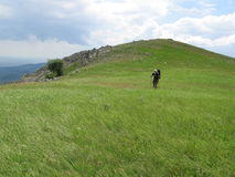 Green hill and men. Men on the green hill Stock Photography