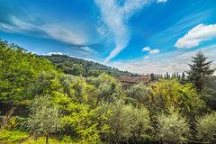 Green hill in Montecatini Royalty Free Stock Photos