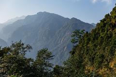 Green hill near Kangchenjunga mountain with clouds above and trees that view in the evening in North Sikkim, India Royalty Free Stock Photos