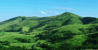 Green hill panorama view. Green slopes of mountain. Preserved nature environment. Panorama of a green hill royalty free stock image