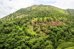 Green hill Polo Stock Photo