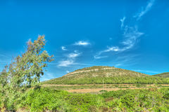 Green hill in Porto Conte, Sardinia Royalty Free Stock Photography
