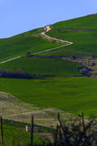 A green hill with serpentine road. A picure of a road in green hills Stock Photo