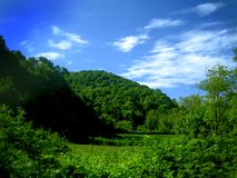 Green hill and sky Stock Images