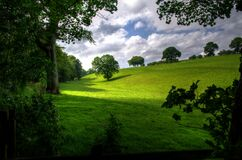 Green Hill With Tree Under White Clouds and Blue Sky during Daytime Stock Image