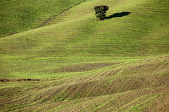 Green hill, Tuscan Countryside, Italian landscape Royalty Free Stock Images