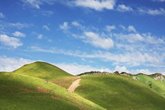 Green hills Royalty Free Stock Photo