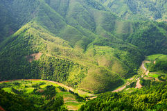 Green hills. The green hills in the sun stock photography