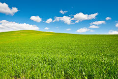 Green Hills Stock Images