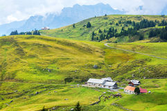 Green hills in Alps, Switzerland Stock Images