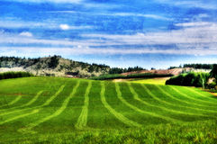 Green Hills Background. Green field freshly cut with lawn lines showing. Blue sky and green grass with mountains in between with a texture overlay Stock Photos