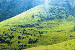 Green hills Royalty Free Stock Photos