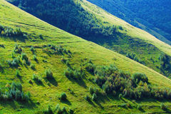 Green hills Royalty Free Stock Photography