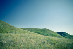 Green hills and blue sky Stock Photos